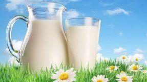 Рецепты молочной диеты