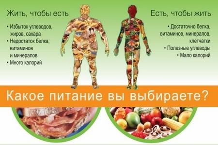 Бесслизистая диета Арнольда Эрета: меню, отзывы, результаты