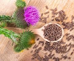 Расторопша для похудения: шрот, капсулы, таблетки, чай