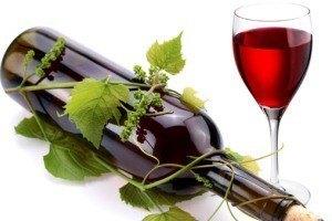 Alkogolnaja-dieta-recepty